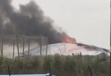 A fire has broken out at Chester Zoo.